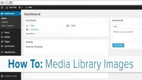 Media Library Images