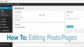 Editing Posts & Pages